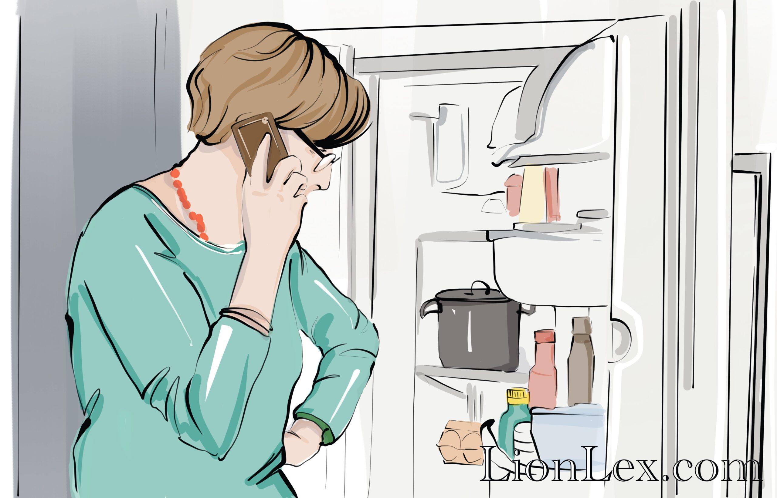возврат холодильника в магазин